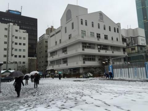 雪景色の桜田公園