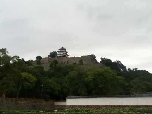 丸亀城の綺麗な石垣と天守閣
