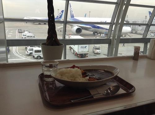羽田空港第2ターミナルのカレー屋さん(「ANA FESTA 59番ゲート フードショップ」)で注文したカツカレーとANAの飛行機
