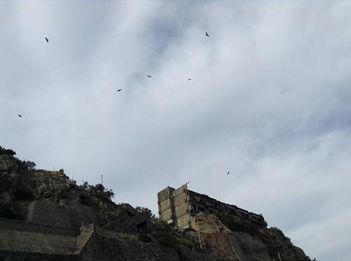 軍艦島の職員社宅(3号)と上空を旋回する鳥たち