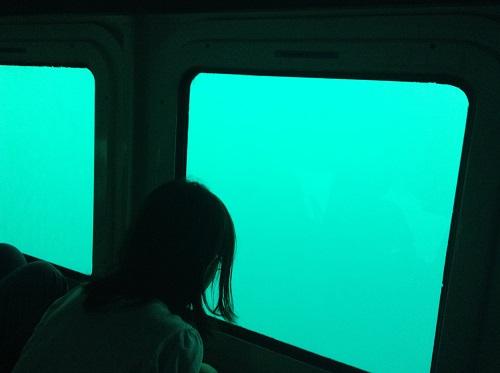 海中展望船「愛媛観光船ユメカイナ(愛南町西海観光船)」の海中展望室内の窓から海中を眺める娘