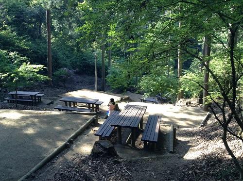 えひめ森林公園のキャンプ場の山の斜面を切り開いて設置されている木造のテーブルと長椅子