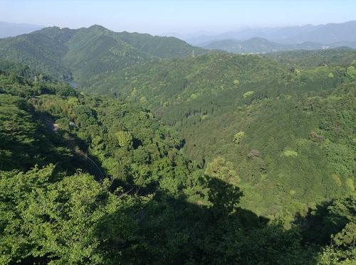 えひめ森林公園 谷上山第2展望台からの眺め(大谷池、キャンプ場方面)