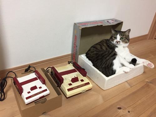 ニンテンドークラシックミニファミコンとファミリーコンピュータの本体の隣にあるファミコンの箱の中でくつろぐ猫-ゆきお
