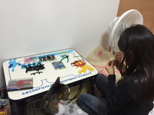 ミニ四駆「スーパーアバンテ ブラックスペシャル」を組み立てる娘の様子を眺める猫-ゆきお