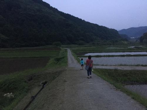 東温市河之内の雨滝ほたるの里の夕闇の田園風景と表側までの道