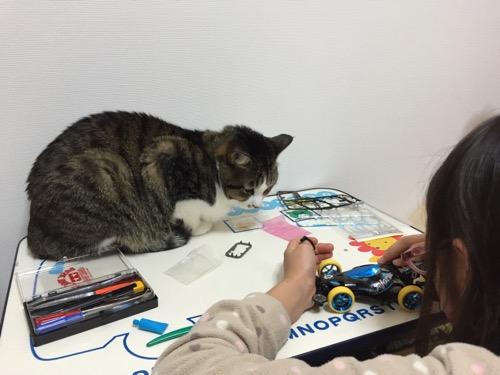 ミニ四駆「スーパーアバンテ ブラックスペシャル」の組み立てを終えようとする娘の様子を机の上で眺める猫-ゆきお