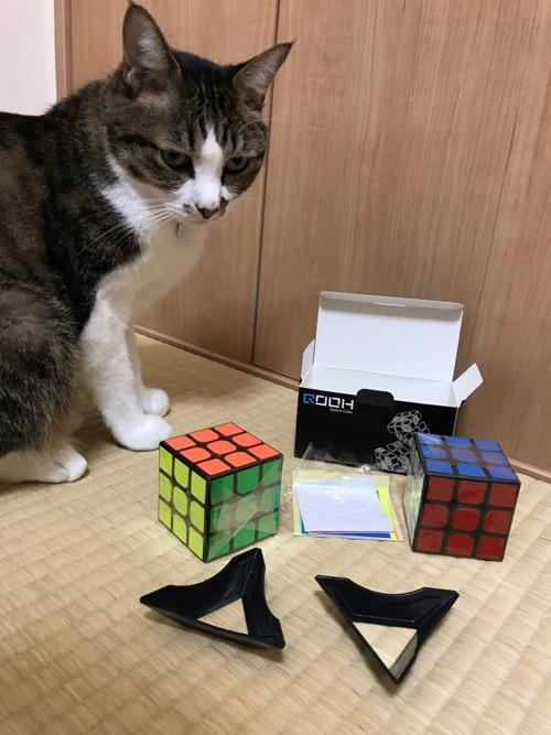 「スピードキューブ QOOH 競技専用ver.2.0 世界基準配色 2個 セット 回転スムーズ 予備のシール パズルスタンドつき」の開封物に近寄る猫-ゆきお