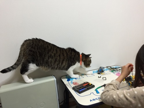 ミニ四駆「スーパーアバンテ ブラックスペシャル」を組み立てる娘にSONY VAIOのデスクトップの筐体から降りて近づく猫-ゆきお