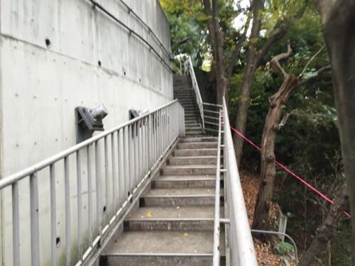 愛宕西参道の石段(山の斜面付近)