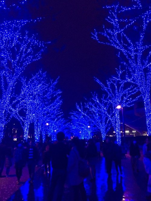 「青の洞窟 SHIBUYA」の人混みの隙間で青く輝く地面