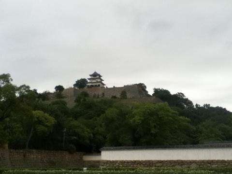 丸亀城の綺麗で高い石垣に見とれる