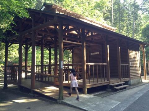 えひめ森林公園のキャンプ場付近を散歩