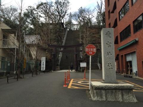 愛宕神社の出世の石段を登り、白猫の尻尾や欠伸を眺める