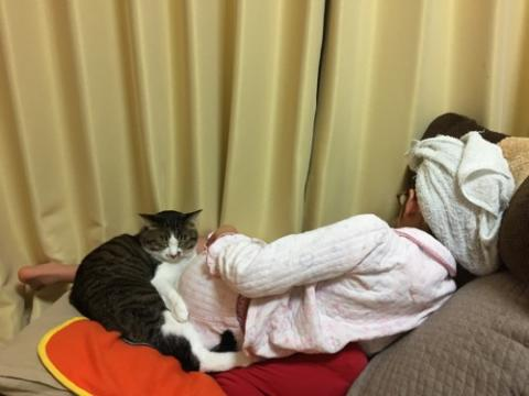 10歳の娘のお尻に顔をうずめて座椅子で仲良く寝る猫-ゆきお