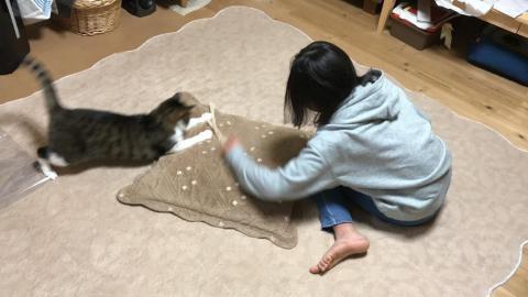 娘、紐と座布団で猫-ゆきおをクルクル回してゴロンゴロン転がす