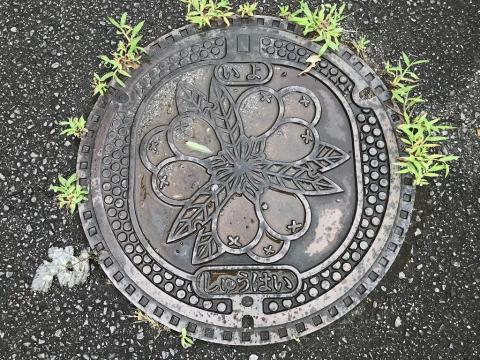 愛媛県伊予市のマンホールの蓋 - 大判焼き 山里周辺の歩道にて