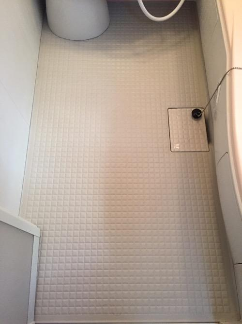 自宅の浴室の概ねキレイになった床