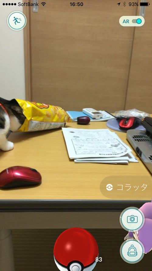 ポケモンGOのコラッタには目もくれず、カルビーバーベキュー味のスナック菓子の袋に顔を突っ込む行儀の悪い猫-ゆきお
