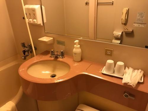新潟第一ホテルのダブルルームのトイレと洗面所とお風呂