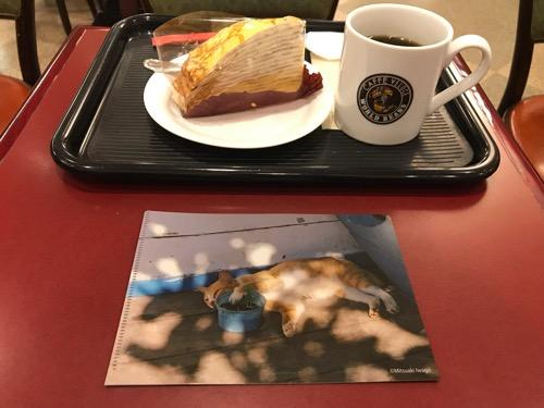 カフェ・ベローチェのケーキ(ミルクレープ)とブレンドコーヒーMサイズと岩合光昭コラボグッズキャンペーン「季節のねこクリアファイル」(8月の猫・表面)
