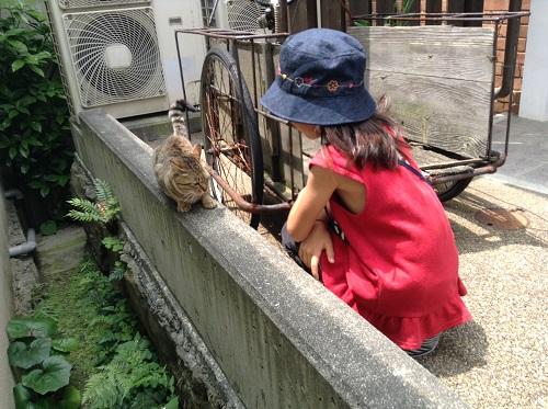 ポコペン横丁(愛媛県大洲市大洲本町3丁目)の野良猫と小学三年生の娘