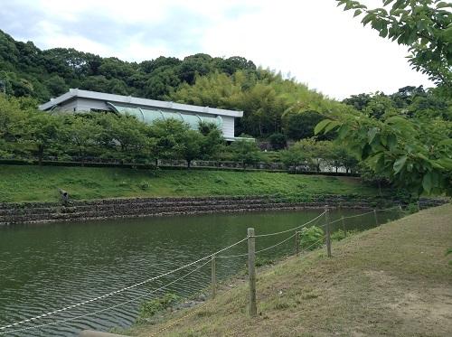 松山市考古館(愛媛県松山市南斎院町乙67番地6)前のため池