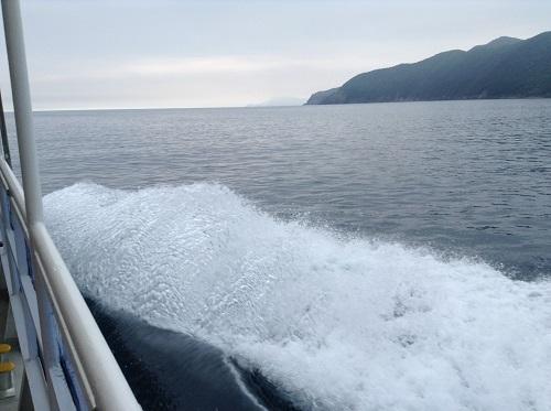 海中展望船「愛媛観光船ユメカイナ(愛南町西海観光船)」の甲板からの眺め(高く上がる波しぶき)