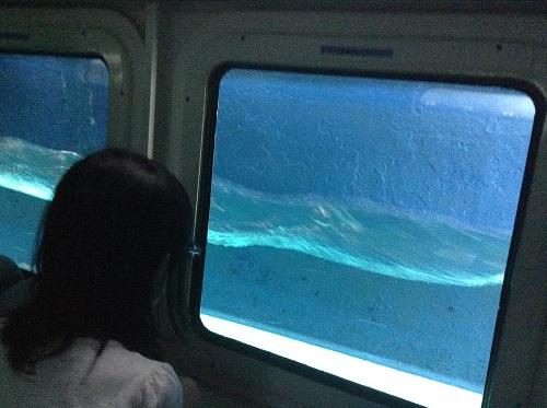 海中展望船「愛媛観光船ユメカイナ(愛南町西海観光船)」の海中展望室内の窓から半分ぐらい海中に入った外を眺める娘