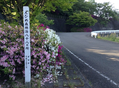 えひめ森林公園 谷上山第2展望台近くの道路脇にある「えひめ森林浴八十八か所 愛媛県 平成15年3月」の標識