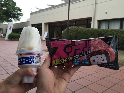 ウェルピア伊予<伊予市都市総合文化施設>(愛媛県伊予市下三谷1761-1)のプール入口内売店で購入したアイスクリーム