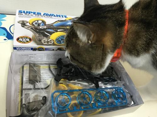 ミニ四駆「スーパーアバンテ ブラックスペシャル」の箱の中身を確認しに来た猫-ゆきお