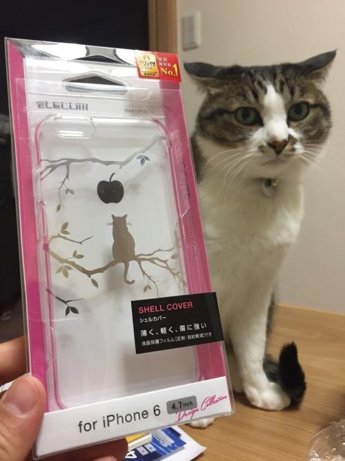 ELECOMの猫柄のiPhone 6用透明ケースと本物の猫-ゆきお