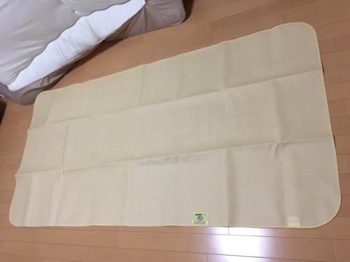 ニトリで購入した「布団の湿気をグングン吸収 除湿シート」をフローリングの床に敷いた時の様子
