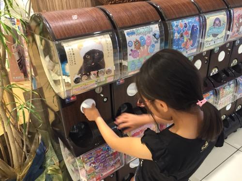 エミフルMASAKIのTSUTAYA前にある「かわいいかわいいねこひつじちゃん」のガチャガチャを回す小学5年生の娘