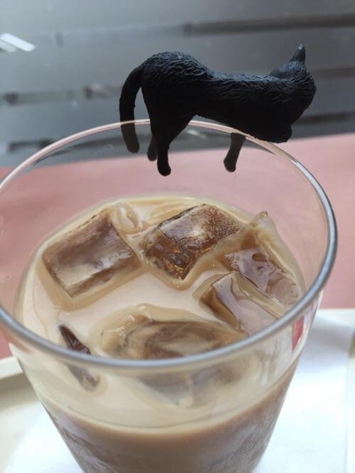 アイスカフェオーレのコップのふちにだらりと座る黒猫の横から見た姿