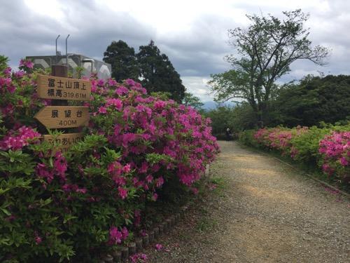 冨士山公園のつつじの花と冨士山山頂付近
