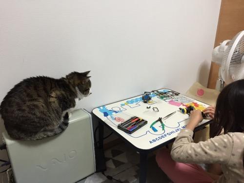 ミニ四駆「スーパーアバンテ ブラックスペシャル」を組み立てる娘の様子をSONY VAIOのデスクトップの筐体の上から眺める猫-ゆきお