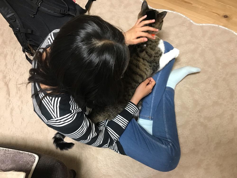 中学2年生の娘の膝上に座ってゴロゴロと喉を鳴らす猫-ゆきお
