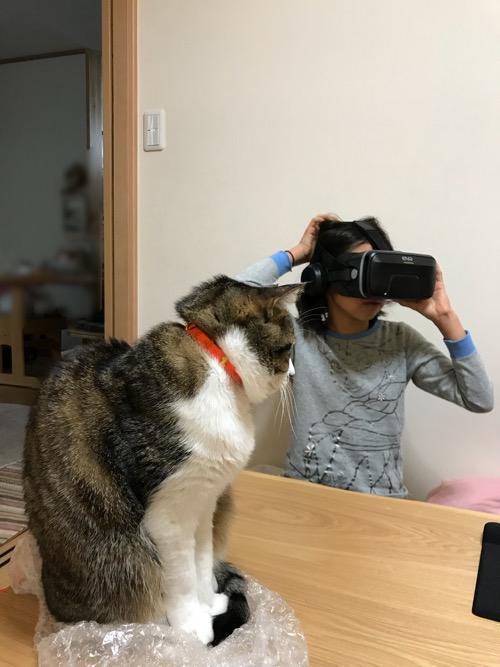 VR眼鏡をかける小学六年生の娘とVR眼鏡の入っていたプチプチの袋の上に座って娘を見つめる猫-ゆきお