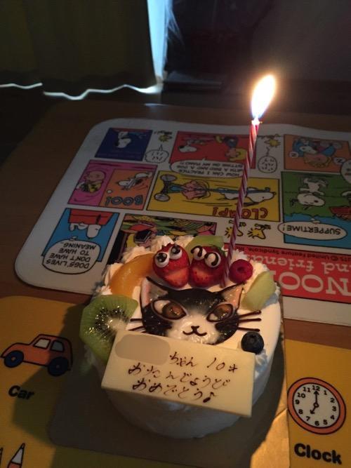 火がついたローソクが1本立つ猫のダヤンの誕生日ケーキ