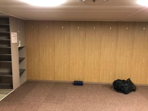 津軽海峡フェリーのブルードルフィンのスタンダード110室の壁際に枕と荷物を置いた時の様子