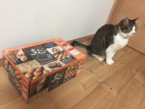 イワタニ たこ焼器の箱と猫-ゆきお