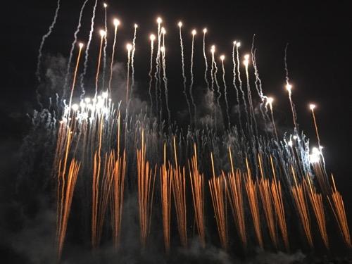 第50回葛飾納涼花火大会の綺麗な複数の束で見せる打ち上げ花火の軌跡