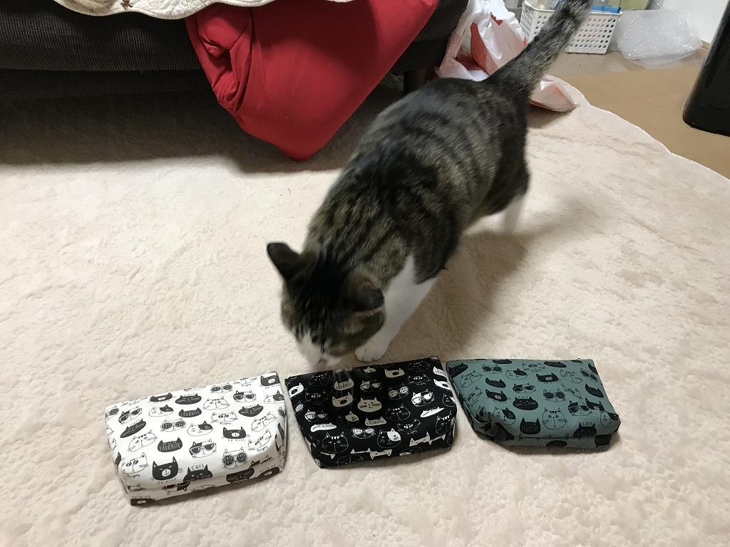 3色の猫柄のポーチ(てふてふ)に近づく猫-ゆきお