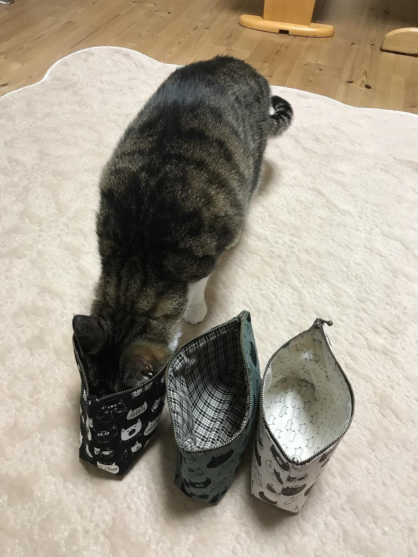 チャックの口が開いた黒色の猫柄ポーチ(てふてふ)に顔を突っ込む猫-ゆきお