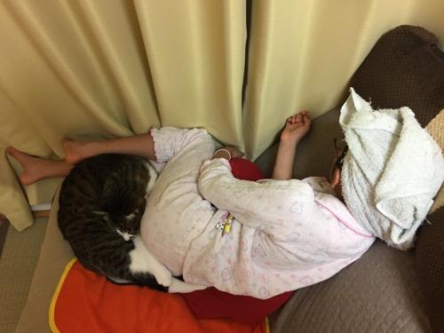10歳の娘のお尻に顔をうずめて眠る猫-ゆきお