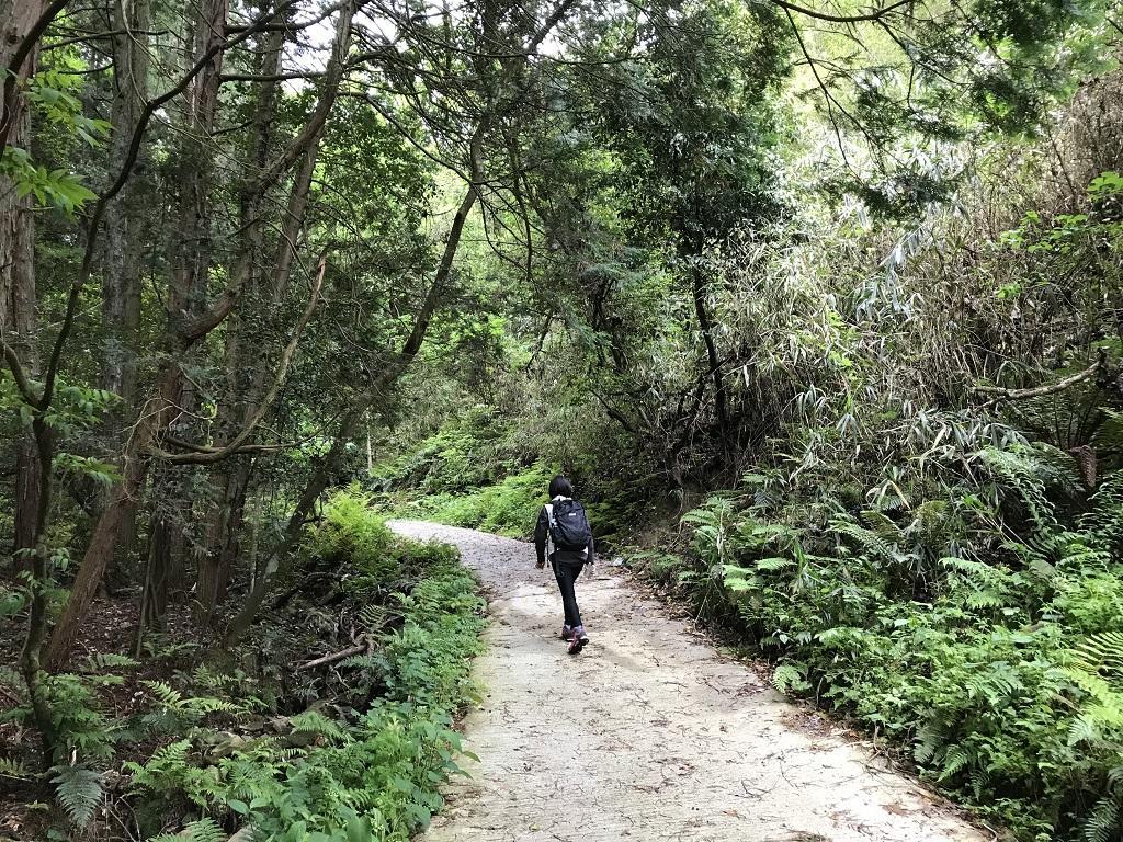 淡路ヶ峠 砂防ダム奥ルート ゆったりマドンナコースで先を歩く高校1年生の娘