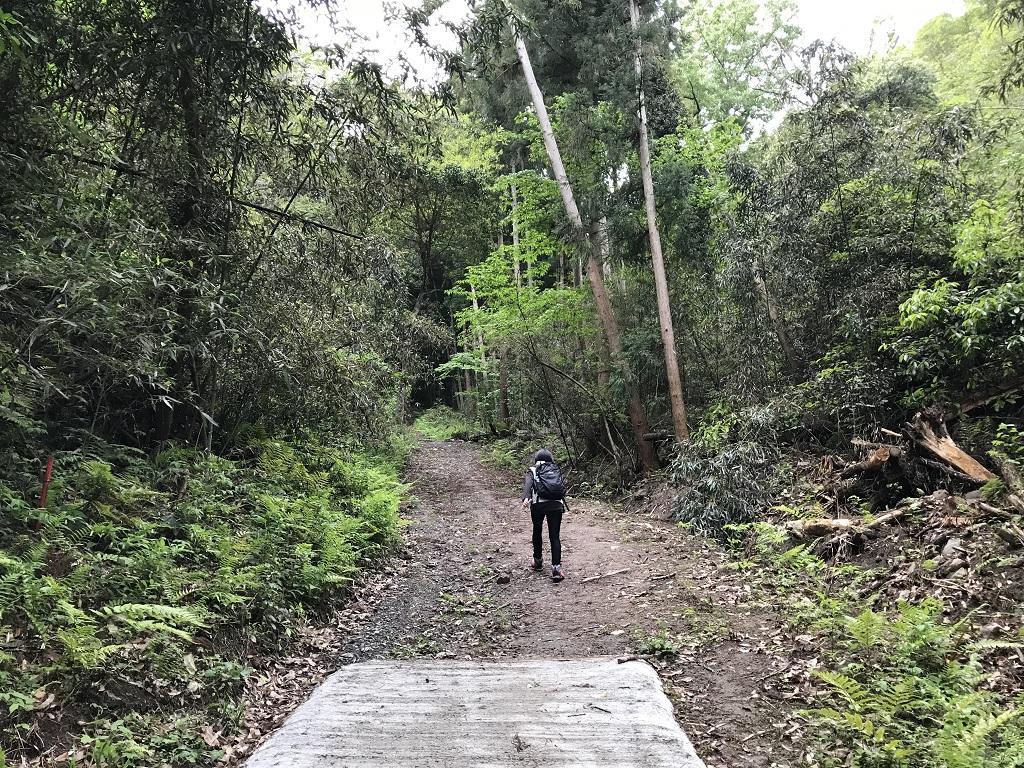 淡路ヶ峠 砂防ダム奥ルート ゆったりマドンナコース 舗装された道の終わり。先を歩く高校1年生の娘