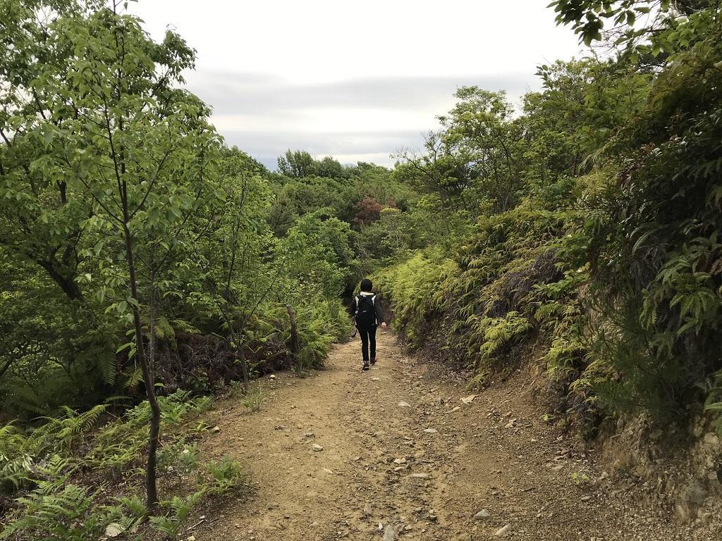 淡路ヶ峠 ゆったりマドンナコース 展望台からの帰り道。先を歩く高校1年生の娘